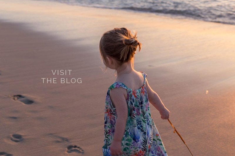 home-button-visit-the-blog-beach