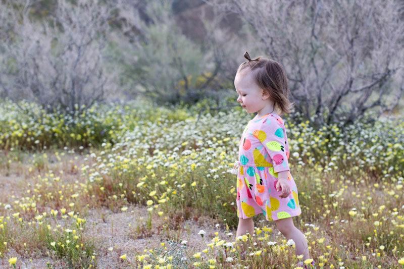 wildflower bryn