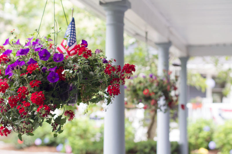 front porch hanging plants