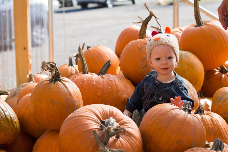 east coast pumpkin patch baby