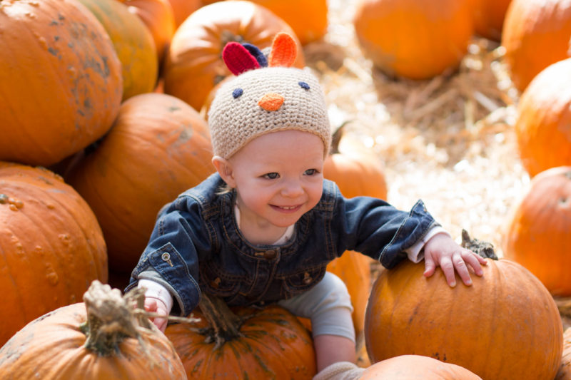 east coast baby in pumpkin patch